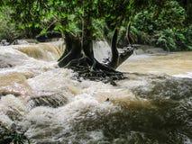Vattenfall av Laos Arkivbilder