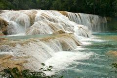 Vattenfall Cataratas de Agua Azul Mexico Fotografering för Bildbyråer