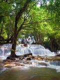 Vattenfall in djupt av skogen Royaltyfri Bild