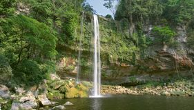 vattenfall för cascadaha-misol Fotografering för Bildbyråer