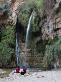 Vattenfall för David ` s i Wadi David, Israel Royaltyfri Fotografi