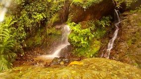 Vattenfall för landskapvattensten stock video