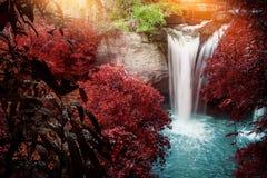 Vattenfall för naturlig bakgrund Vattenfall Arkivfoton