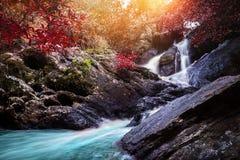 Vattenfall för naturlig bakgrund Vattenfall Fotografering för Bildbyråer