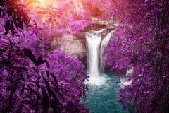 Vattenfall för naturlig bakgrund Vattenfall Royaltyfri Foto