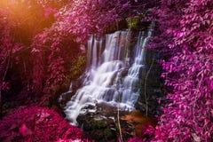 Vattenfall för naturlig bakgrund Vattenfall Royaltyfria Bilder