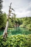 vattenfall för plitvice för croatia lakesnationalpark sostavtsy Arkivfoto