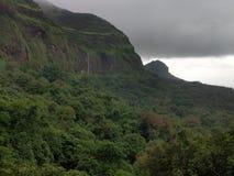 Vattenfall för skog för lock för väder för grönskabeautiful royaltyfria bilder