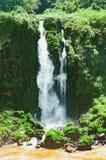 Vattenfall från Cataratas gör Iguacu på staden av Foz gör Iguacu Fotografering för Bildbyråer