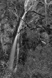 Vattenfall från den Peneda Geres nationalparken Royaltyfri Bild