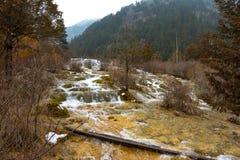 Vattenfall från en klippa i skogen fotografering för bildbyråer