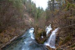 Vattenfall från en klippa i skogen royaltyfri fotografi