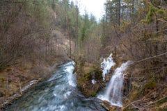 Vattenfall från en klippa i skogen arkivbild