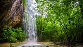 Vattenfall från en vagga i en djup skog stock video