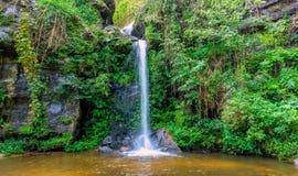 Vattenfall från ravin Royaltyfri Foto