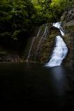 Vattenfall - Grimesdalgång - New York royaltyfri fotografi