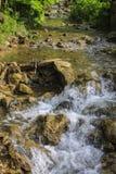Vattenfall höstlig skog Royaltyfri Fotografi