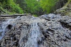 Vattenfall i bergskog Arkivfoton