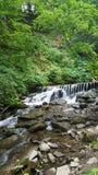 Vattenfall i Carpathian berg, Ukraina Royaltyfria Bilder
