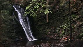 Vattenfall i carpathian skog lager videofilmer