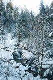 Vattenfall i de Carpathian bergen i vinter Arkivbild
