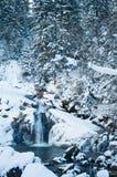 Vattenfall i de Carpathian bergen i vinter Royaltyfria Foton
