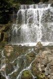 Vattenfall i den Chinzan-so trädgården, Tokyo, Japan 免版税库存图片