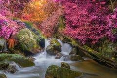 Vattenfall i den djupa regnskogdjungeln (den Krok E Dok vattenfallet Sarab Royaltyfria Foton