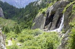 Vattenfall i den Formazza dalen Fotografering för Bildbyråer