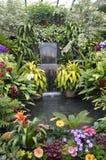 Vattenfall i den Kanada trädgården Royaltyfri Foto