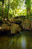 Vattenfall i djungeln Arkivbild