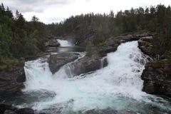 Vattenfall i den norska skogen Arkivbild