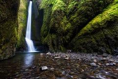 Vattenfall i den Oneonta klyftaslingan, Oregon Arkivbild