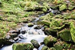 Vattenfall i den Padley klyftan, maximalt område, Derbyshire UK arkivbilder