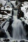 Vattenfall i den Triberg im vintern Royaltyfri Bild