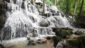 Vattenfall i den tropiska skogen stock video