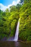 Vattenfall i den tropiska skogen Munduk, Bali royaltyfria foton