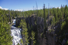 Vattenfall i den Yellowstone nationalparken Royaltyfria Bilder