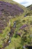 Vattenfall i Derbyshire Royaltyfria Foton