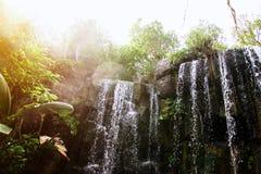 Vattenfall i djungel Arkivfoto