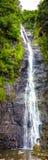 Vattenfall i djungel Royaltyfri Fotografi