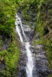Vattenfall i djungel Arkivbilder