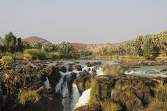 Vattenfall i djungeln Royaltyfri Fotografi