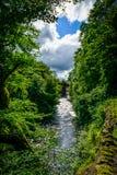 Vattenfall i djungeln Royaltyfria Bilder