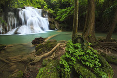 Vattenfall i djup skog Royaltyfri Fotografi
