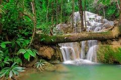 Vattenfall i djup skog av Thailand Royaltyfri Fotografi