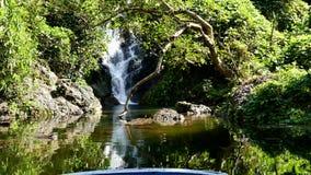 Vattenfall i djup tropisk regnskog stock video
