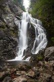 Vattenfall i djupa trän royaltyfri bild