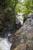 Vattenfall i dschungle av Panama Arkivbild