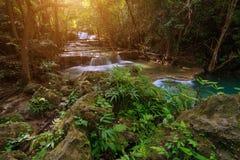 Vattenfall i en djup skog Fotografering för Bildbyråer